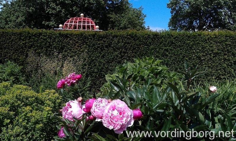 botanisk have århus adresse bio odense