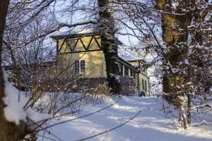 Kirkeskoven i Vordingborg 29. december 2014