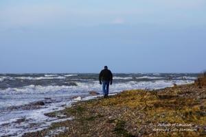 Ore strand ved Vordingborg efter stormen Egon - 11. januar 2015