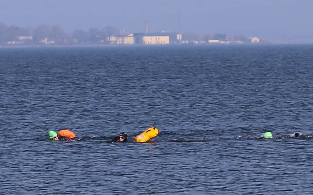 Morten Østergaard (B) svømmede fra Lindholm til Kalvehave – se billeder