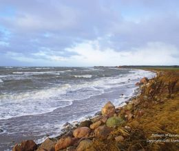 Ore beach at Vordingborg after the storm Egon - January 11, 2015