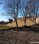 Genetablering af voldgraven omkring Vordingborg Slot